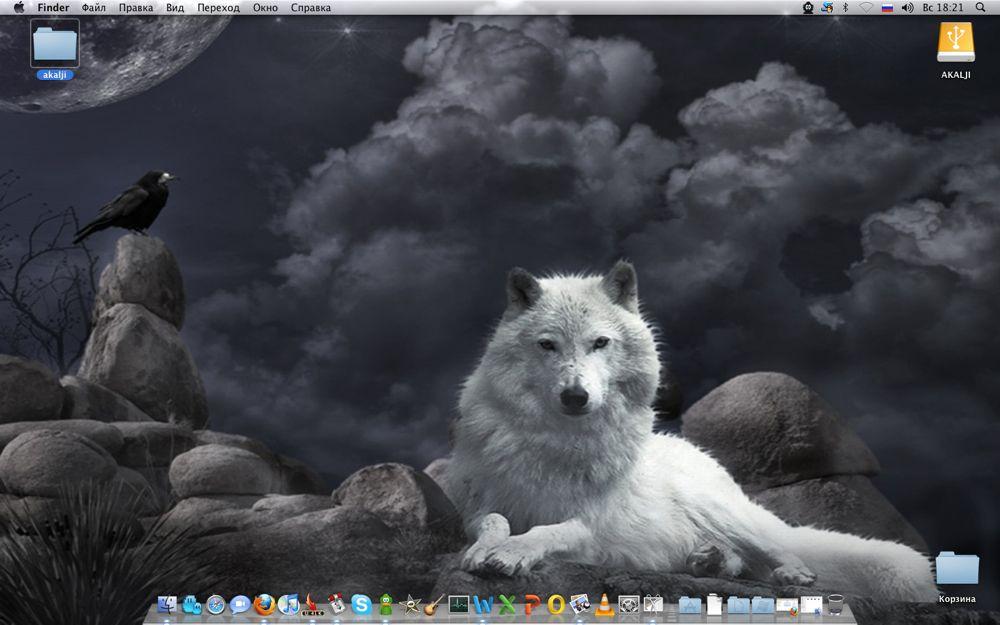 hd обои на рабочий стол волк № 1696601  скачать